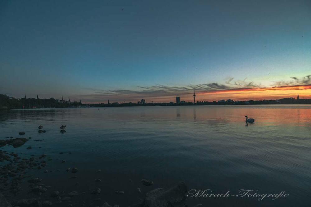 skyline-der-alster-zur-blauen-stunde