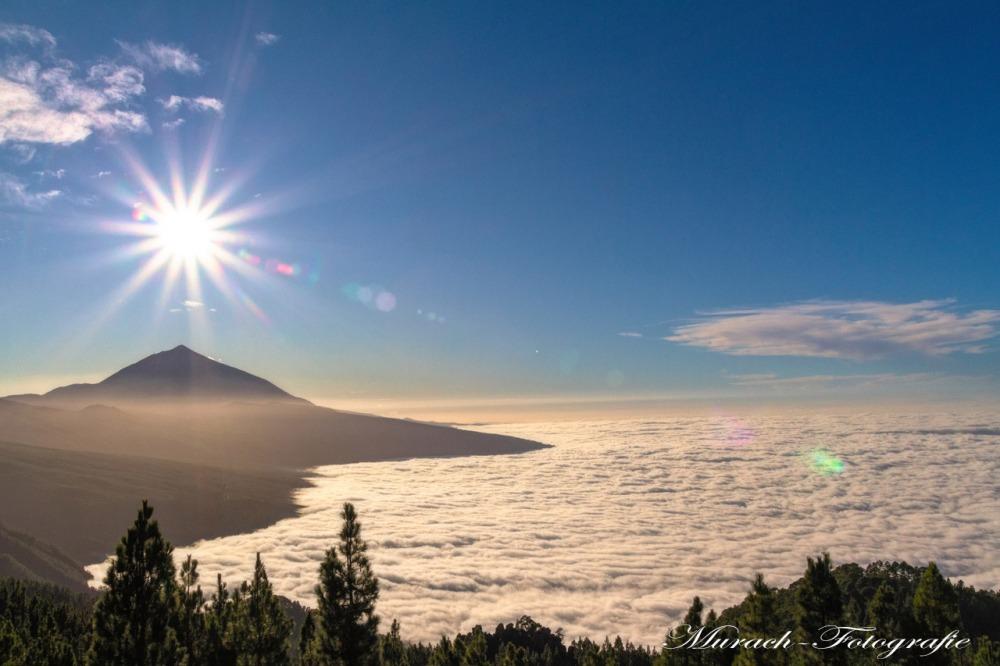 in-den-bergen-ueber-den-wolken-hamburg-wandbild