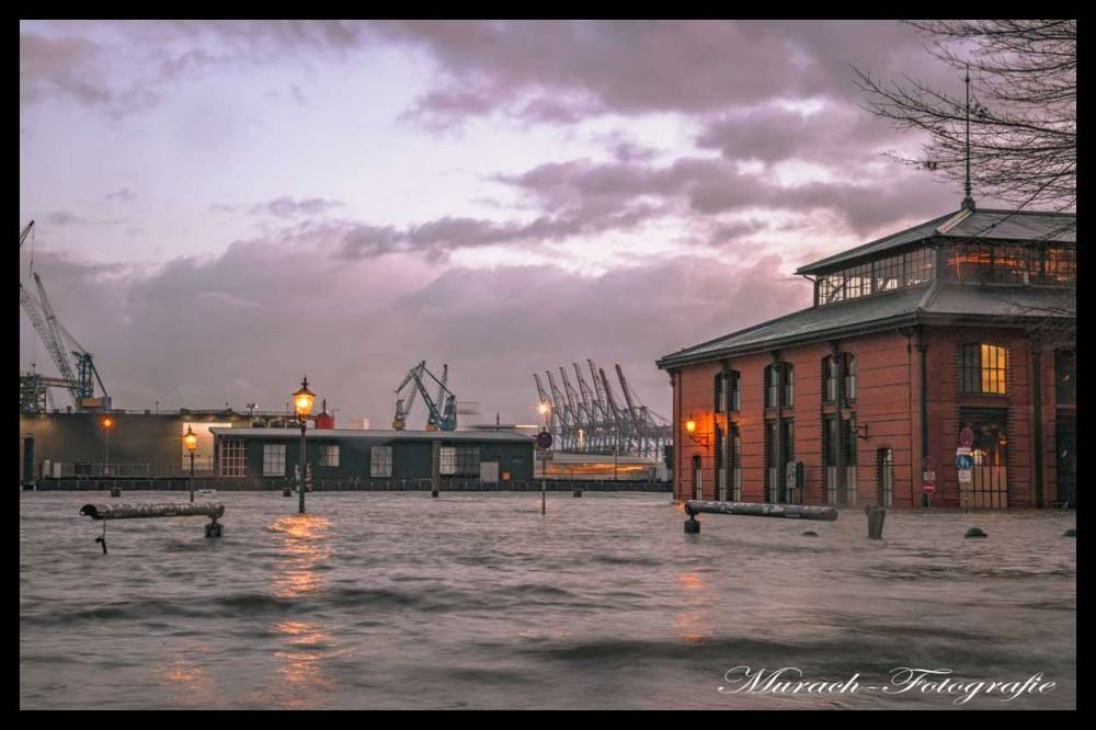 ueberfluteter-fischmarkt-murach-fotografie