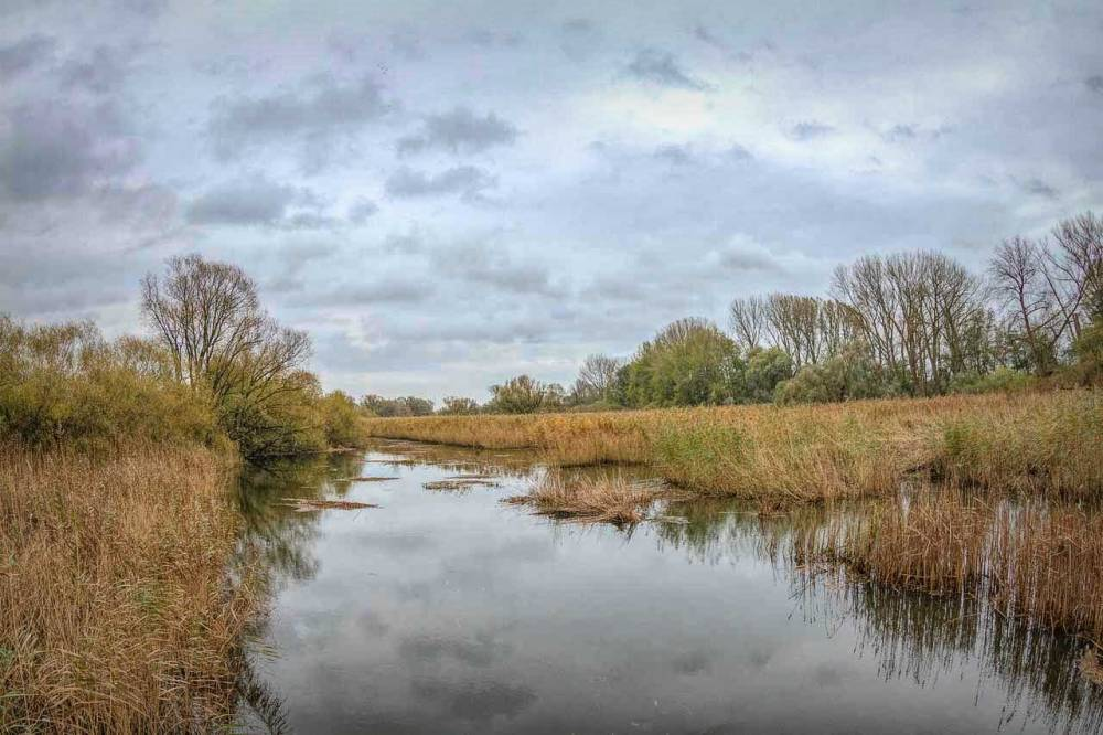 naturschutzgebiet-heukenlock-wilhelmsburg